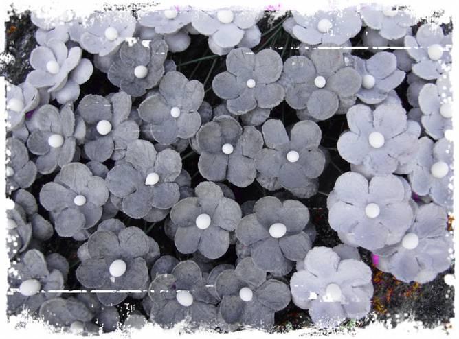Bilde av Søte blomster, grå (6)