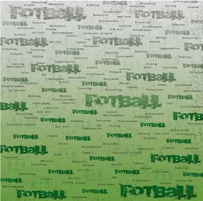 Bilde av Fotballbane (25)